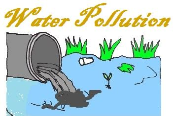 The causes of pollution essay